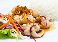 Steamed rice with fried squid with garlic and pepp Stock Images