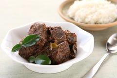 Rendang beef Royalty Free Stock Photos