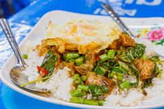 Steamed rice topped with stir-fried crisp pork , basil and over Stock Photo