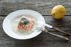 Steamed salmon with dill and rice Royalty Free Stock Photos