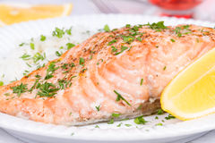 Steamed salmon with fresh herbs Royalty Free Stock Photo