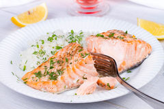 Steamed salmon with fresh herbs and lemon. Rice as a garnish. Stock Photography