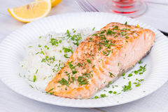 Steamed salmon with fresh herbs and lemon. Rice as a garnish. Royalty Free Stock Photography