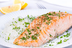 Steamed salmon with fresh herbs and lemon. Rice as a garnish. Royalty Free Stock Images