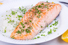 Steamed salmon with fresh herbs and lemon. Rice as a garnish. Stock Photos