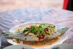 Steamed sea bass fish with lemon, Thai famous local food served on fish shape plate. Thai recommend menu for tourist. Steamed fish with herb and lemon, topped stock photo