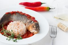 Steamed sea bass in tomato sauce with chili pepper. Stock Photos