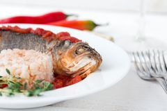 Steamed sea bass in tomato sauce with chili pepper. Royalty Free Stock Photo