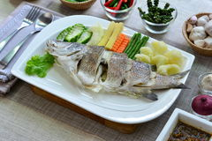 Steamed sea bassfish Stock Images