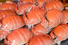 Steamed sea crab( Calappidae) Stock Image