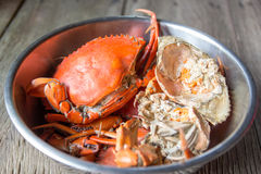 Steamed Sea Crabs. In a bowl Royalty Free Stock Images