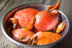 Steamed Sea Crabs. In a bowl Royalty Free Stock Image