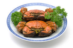 Steamed shanghai crabs Royalty Free Stock Photos