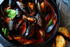 Steamed shellfish in pan. Food closeup Stock Photos