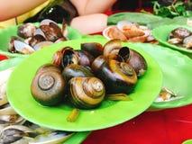 Steamed shellfish, Vietnam Royalty Free Stock Photos