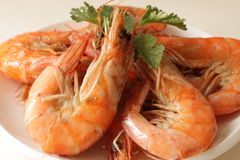 Steamed shrimp on dish Royalty Free Stock Photography