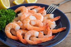 Steamed shrimp on plate. Steamed shrimp on blue plate stock photo