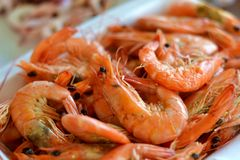 Steamed shrimps food Stock Photos