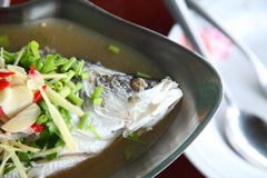 Steamed snapper fish Royalty Free Stock Photos
