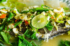 Steamed snapper fish with lemon stock photo