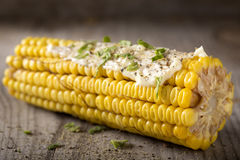 Steamed sweet corn Royalty Free Stock Image