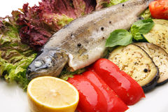 Steamed trout Royalty Free Stock Images