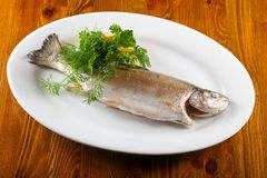 Steamed trout. Served lemon and parsley stock photo
