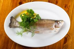 Steamed trout. Served lemon and parsley stock image
