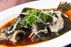 Steamed Turbot Stock Photography