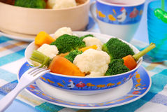 Steamed vegetables for baby Royalty Free Stock Photo