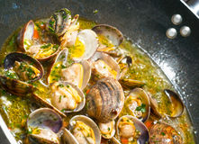 Steamer Clams with Garlic and Basil Stock Images