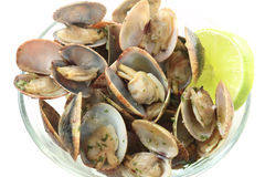 Steamer clams seasoned with salt Royalty Free Stock Photos