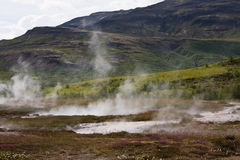 Steaming. Steam rises from hot water spots. Geyser area, Iceland Stock Images