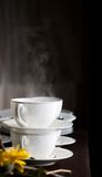 Steaming Royalty Free Stock Image