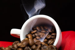 Steaming coffee beans Royalty Free Stock Images