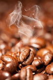 Steaming coffee beans Stock Image
