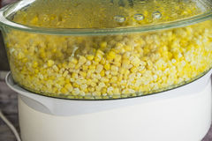 Steaming Corn seed Stock Photography
