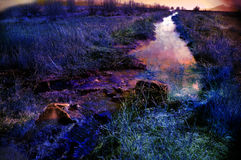 Steaming creek Royalty Free Stock Photo