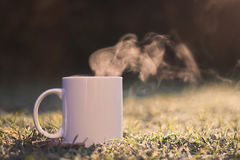 Steaming cup Royalty Free Stock Image