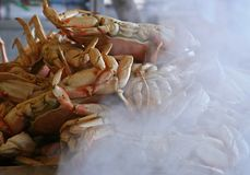 Steaming Dungeness Crabs. Dungeness crabs steaming at a sidewalk vendor in San Francisco stock photography