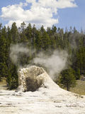 Steaming Geyser Cone, Yellowstone NP, Wyoming Stock Images