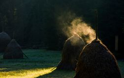 Steaming haystack near the forest at sunrise. Rare rural background Royalty Free Stock Image