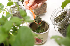 Steaming herbs Stock Photo