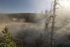 Steaming Hot Spring, Fountain Paint Pot Yellowstone National Park. Yellowstone National Park is a nearly 3,500-sq.-mile wilderness recreation area atop a stock image