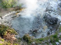 Steaming hot spring at Furnas, Sao Miguel, The Azores. Bubbling hot spring with steam in the village of Furnas on Sao Miguel island, The Azores royalty free stock photos