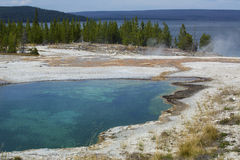 Steaming hot springs on shore of Yellowstone Lake, Wyoming. Stock Image