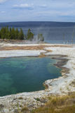 Steaming hot springs on shore of Yellowstone Lake, Wyoming, vert Royalty Free Stock Images