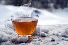 Steaming hot tea in a glass cup is standing outside on a cold wi Stock Photos