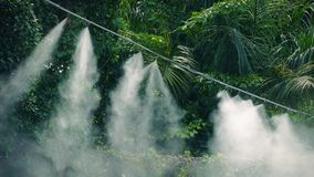 Steaming Irrigation System In Jungle stock footage