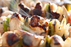 Steaming kebabs on the grill close-up Royalty Free Stock Photo